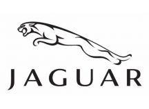 Pack LED Jaguar